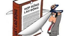 tranh-chap-hop-dong-lao-dong
